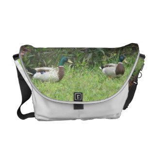 El pato silvestre masculino Ducks la bolsa de mens Bolsa De Mensajería