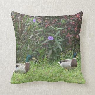 El pato silvestre masculino Ducks las almohadas