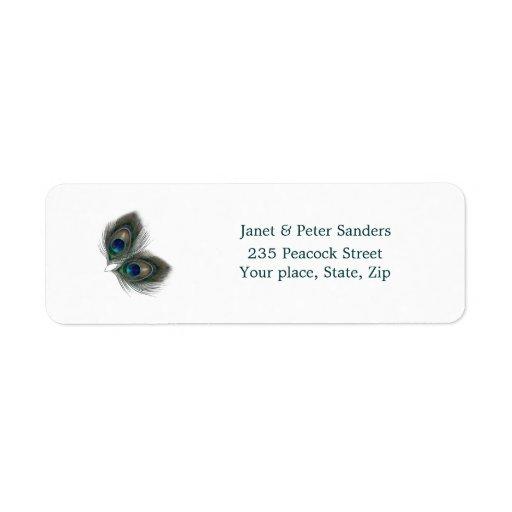 El pavo real azulverde empluma la etiqueta del etiquetas de remite