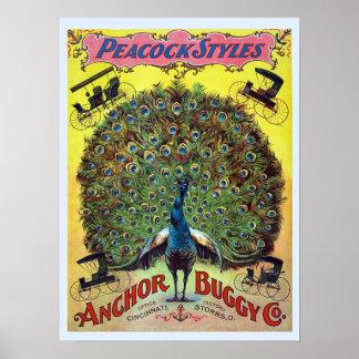 El pavo real con errores del ancla diseña el póster