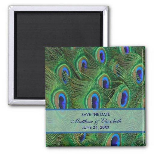El pavo real del azul real del verde esmeralda emp imán