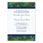 El pavo real del azul real del verde esmeralda comunicados personalizados