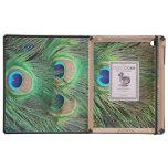El pavo real empluma 3 cajas del folio del iPad de iPad Coberturas