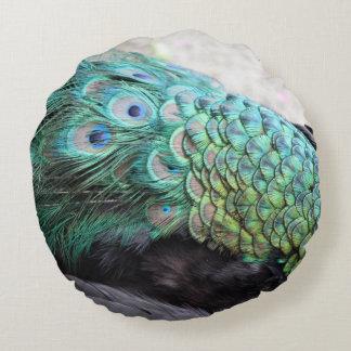 El pavo real empluma alrededor de la almohada de cojín redondo