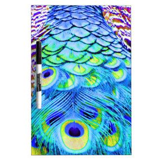 El pavo real empluma colores multi pizarra