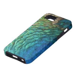 El pavo real empluma diseño abstracto colorido de iPhone 5 carcasas