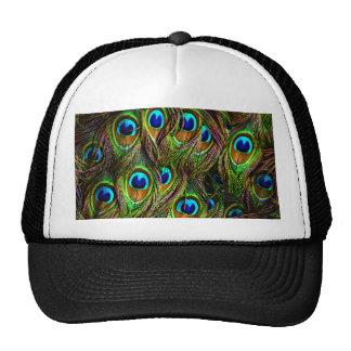 El pavo real empluma la invasión gorras