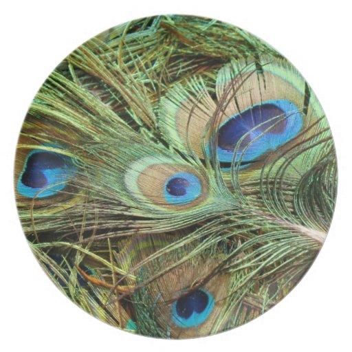 El pavo real empluma la placa plato de comida