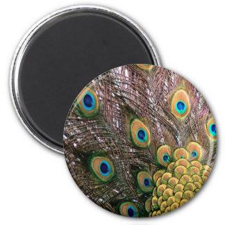 El pavo real empluma verde esmeralda y el oro imán redondo 5 cm