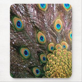El pavo real empluma verde esmeralda y el oro mouse pad