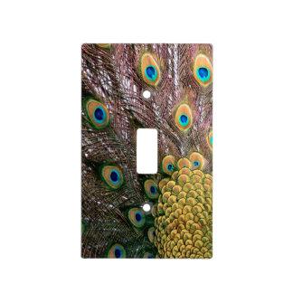 El pavo real empluma verde esmeralda y el oro tapa para interruptor