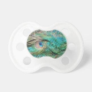 El pavo real precioso empluma ojos hermosos chupete de bebé
