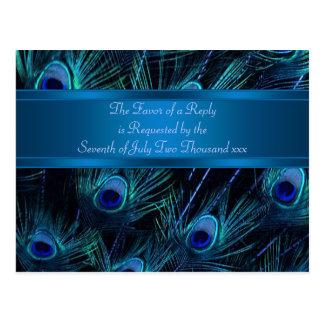 El pavo real púrpura del azul real empluma el boda postales