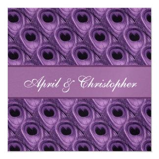 El pavo real púrpura empluma la invitación invitación 13,3 cm x 13,3cm