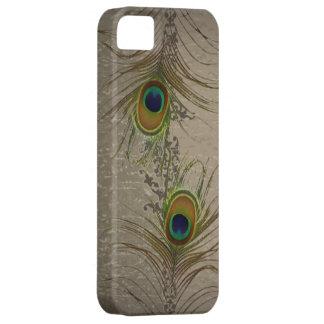 el pavo real verde de la aguamarina del vintage iPhone 5 carcasas