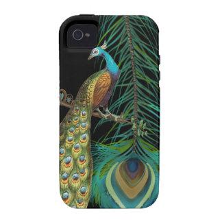 El pavo real y le empluma elige color de fondo iPhone 4/4S carcasas