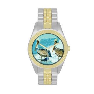 El pelícano de Brown en invierno colorea el extrac Reloj