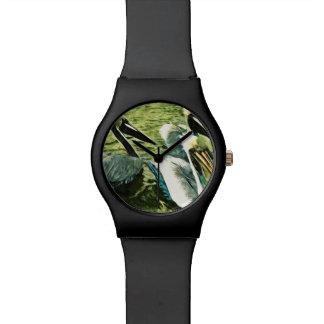 El pelícano de Brown en invierno colorea el extrac Relojes De Mano