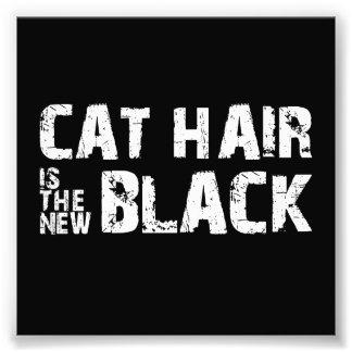 El pelo del gato es el nuevo negro arte fotografico