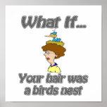 El pelo era una jerarquía de los pájaros posters