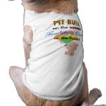 El peluche refiere la camisa del mascota del inter camisa de mascota