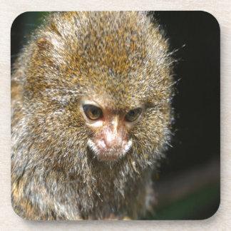 el pensador profundo del mono aprende de experienc posavasos