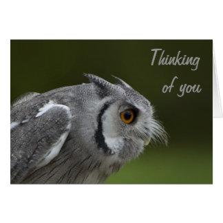 El pensamiento en usted carda - el búho del gris d felicitacion