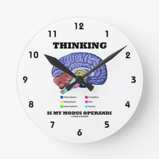 El pensamiento es mi modus operandi (el cerebro an relojes