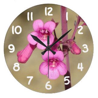 El Penstemon del Parry Reloj Redondo Grande