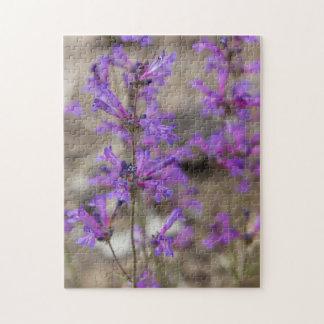 El Penstemon llamativo Mt. Shasta florece Rompecabeza Con Fotos
