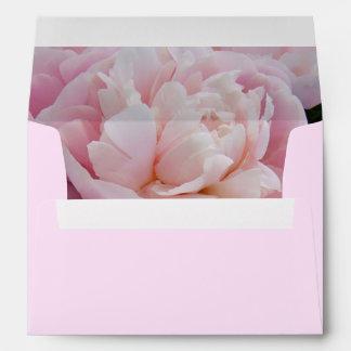 El peony rosado florece el sobre de la tarjeta de