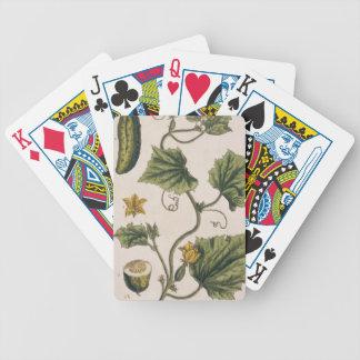 """El pepino del jardín, platea 4 """"de un herbario cur barajas de cartas"""