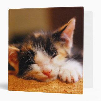 """El pequeño dormir del gatito carpeta 1 1/2"""""""
