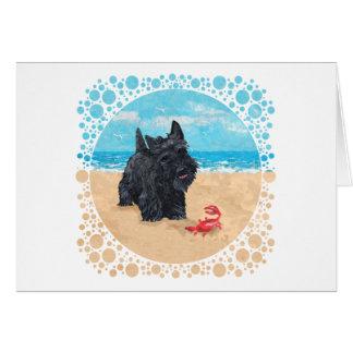 El pequeño escocés encuentra un cangrejo en la pla tarjeta de felicitación