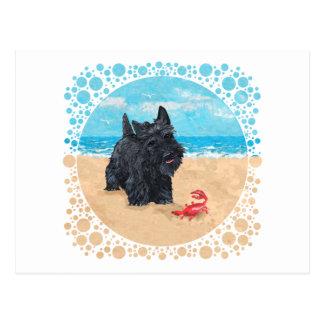 El pequeño escocés encuentra un cangrejo en la pla tarjeta postal