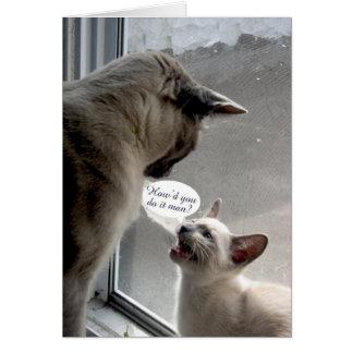el pequeño gato pregunta a gato grande tarjeta de felicitación