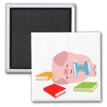 El pequeño imán del aficionado a los libros (cerdo