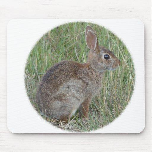 El pequeño moreno más lindo y conejito blanco tapete de ratón