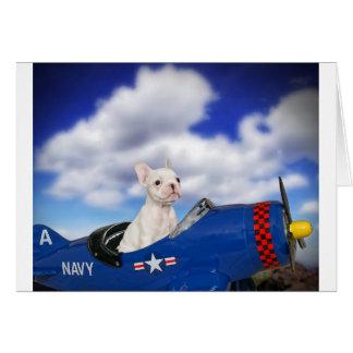 El pequeño piloto tarjetón