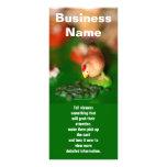 El pequeño pollo, nombre comercial, dice a diseños de tarjetas publicitarias