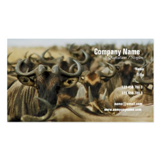 El perfil del safari de Kenia de los gnus del Wild Plantillas De Tarjetas De Visita