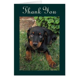 El perrito culpable de Rottweiler le agradece card Felicitaciones