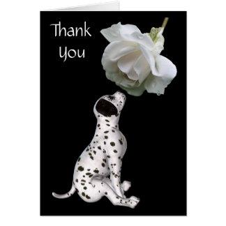 El perrito dálmata y el rosa blanco le agradecen c tarjeta pequeña