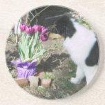 El perrito del collie huele las flores posavasos diseño