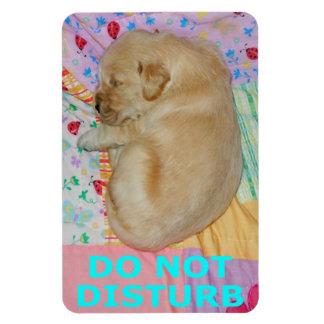 El perrito del golden retriever no perturba el imá imanes flexibles