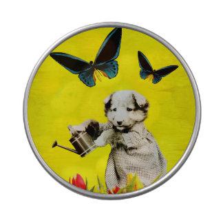El perrito del vintage florece amarillo de la frascos de dulces