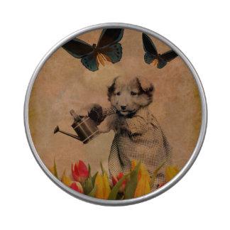 El perrito del vintage florece el collage de la latas de caramelos