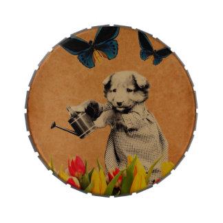 El perrito del vintage florece Grunge de la Frascos De Dulces