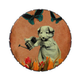 El perrito del vintage florece la mariposa I Latas De Caramelos