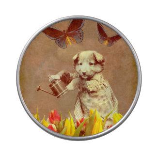 El perrito del vintage florece la mariposa jarrones de dulces